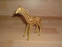 Girafe neuve
