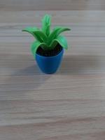 Pot plante verte
